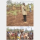 Burundi : La population de Gishubi invités à pratiquer l'agriculture moderne